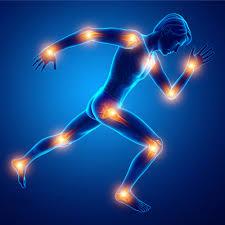 Orthopedics in Regenerative Medicine